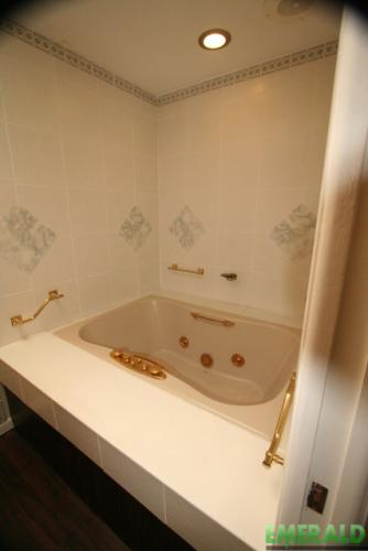 Before view of the old tub
